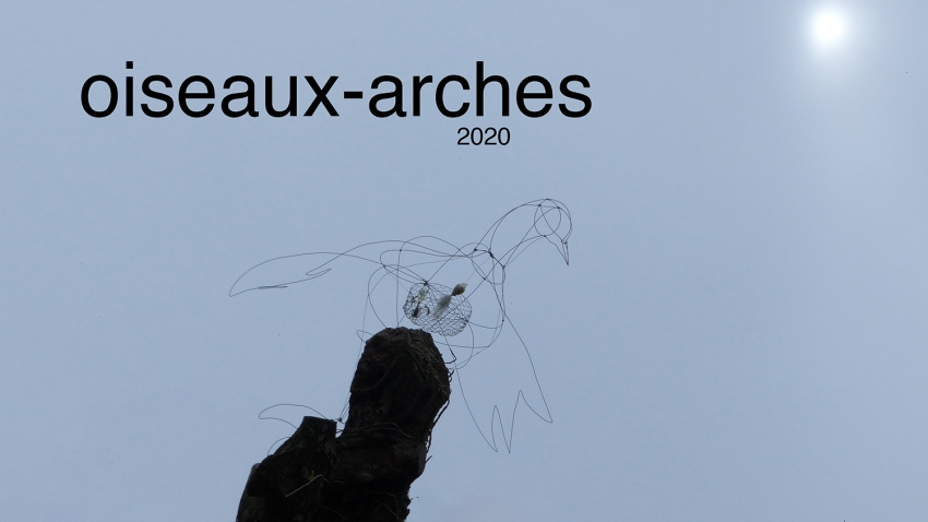 Oiseaux-arches